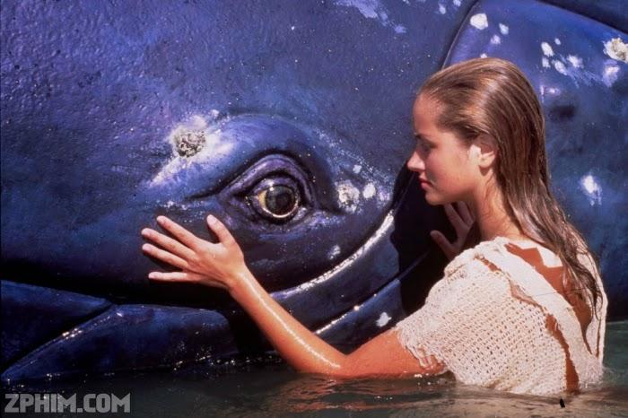 Ảnh trong phim Cô Gái Đại Dương - Ocean Girl Season 1 1