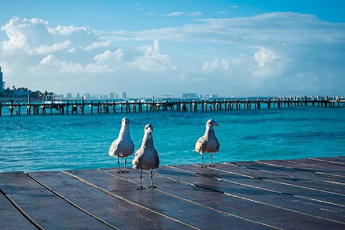Cancun05.jpg