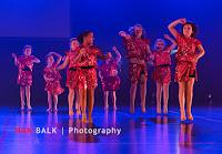 Han Balk Voorster Dansdag 2016-4722.jpg
