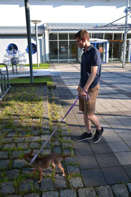 7. Juni 2016: On Tour in Neustadt a.d. Waldnaab - DSC_0429.JPG