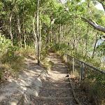 Bushwalking near Rocky-high view point (389894)