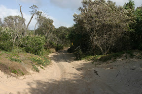 Trail in and out of the campground