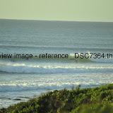 _DSC7364.thumb.jpg