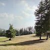 Naldehra Golf Course2.jpg