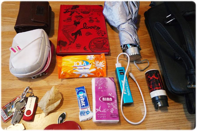 ce am in geanta