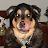 Belmar Dizon avatar image