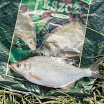 20160601_Fishing_BasivKut_010.jpg