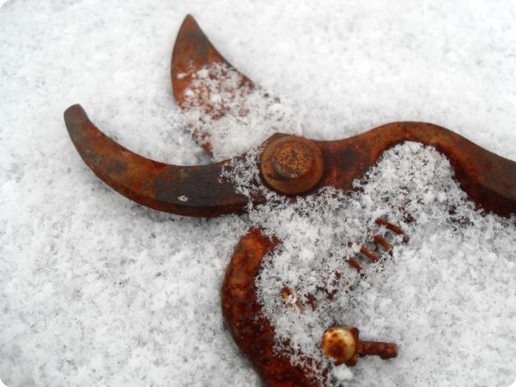 Sne og rust