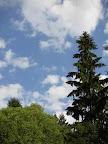 chotěbořská obloha