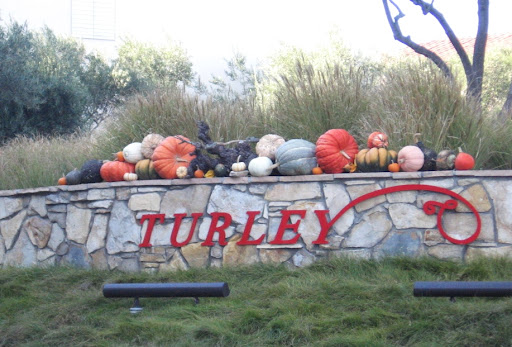 turley sign with gourds