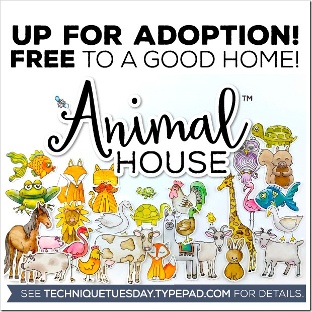 Animal-House-Adoption-SM-Square