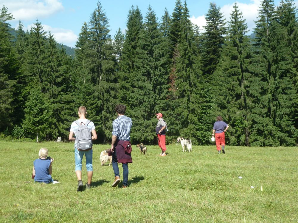 Székelyzsombori tábor 2015 2. turnus - zsombor087.jpg