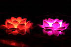 LED Lotus Flower :: Date: Jun 23, 2012, 12:11 AMNumber of Comments on Photo:0View Photo