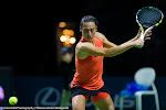 Francesca Schiavone - BNP Paribas Fortis Diamond Games 2015 -DSC_8818.jpg