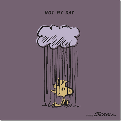 Woodstock Not My Day