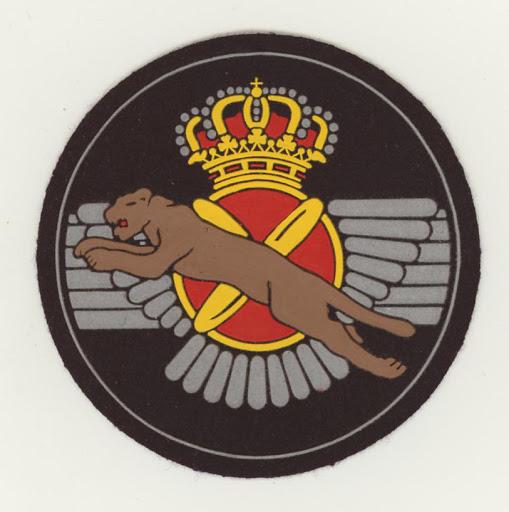 SpanishAF 402 esc v1.JPG