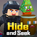 Hide and Seek icon
