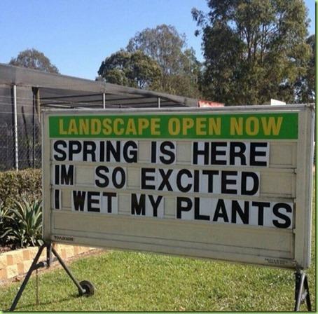 spring actually