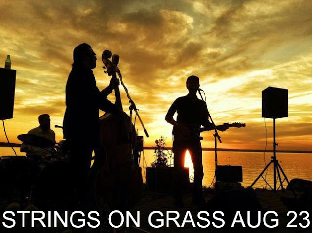 photo of Strings on Grass Sunset Concert