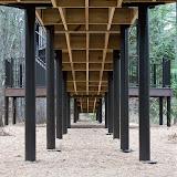 treehouse-underbelly_MG_2535-copy.jpg