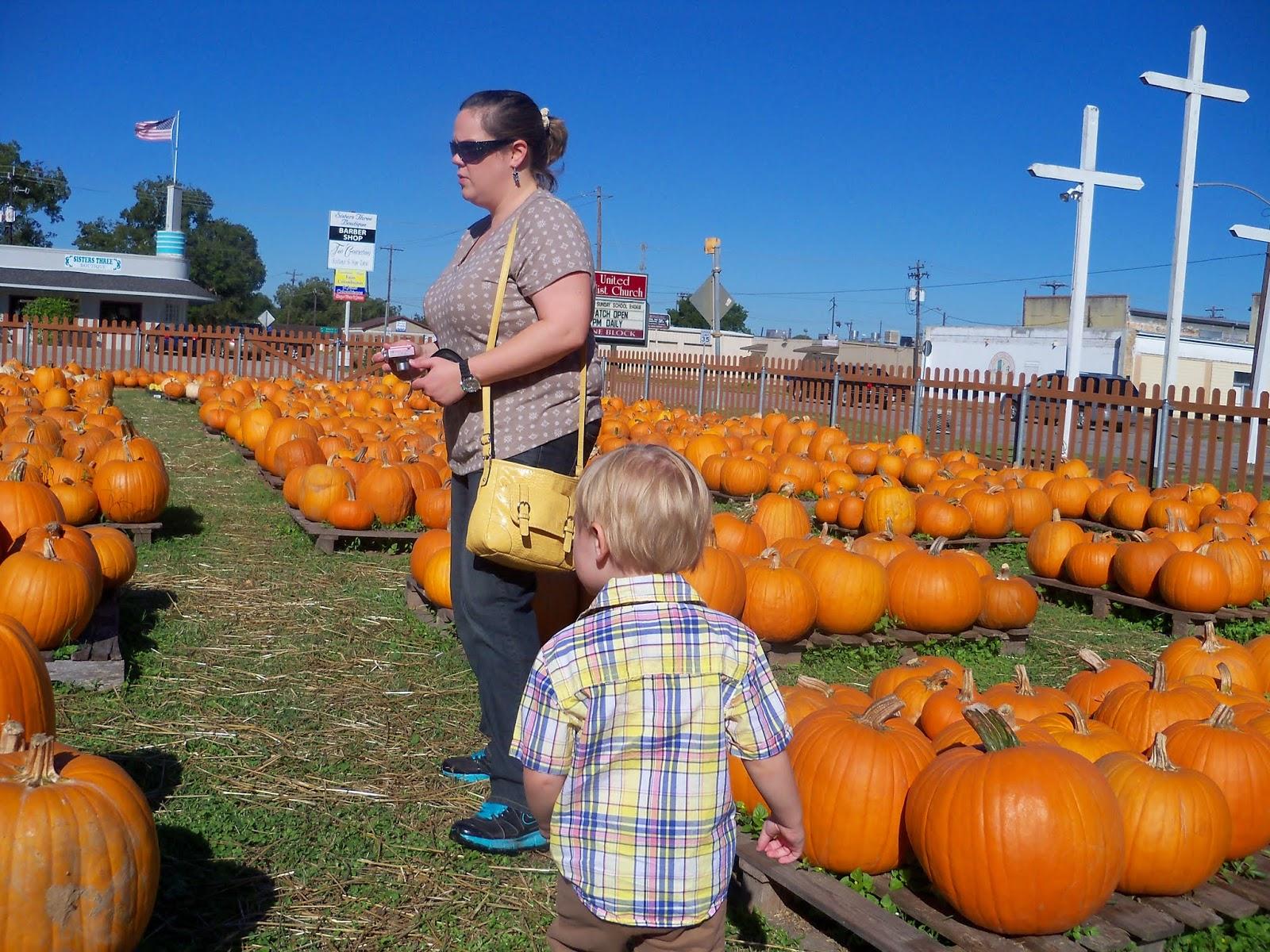 Pumpkin Patch 2014 - 116_4399.JPG
