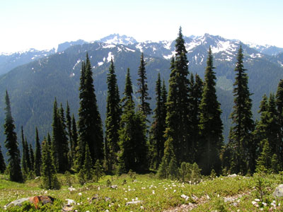 View south from LaCrosse Pass