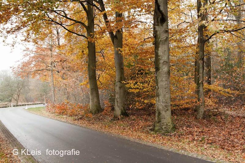 Herfst 2013 - Herfst_2013_053.jpg