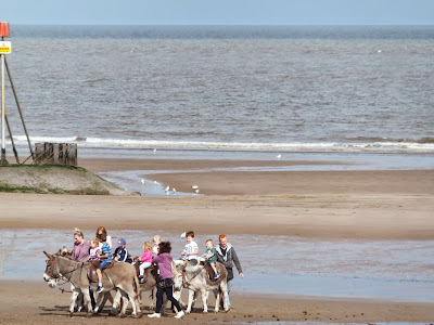 Mablethorpe donkeys