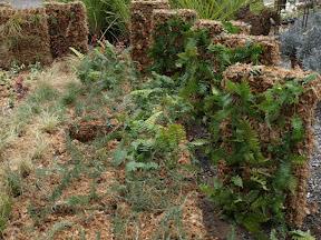 nous réalisons à la pépinière des kits avec les végétaux