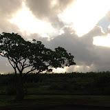 hawaii - 43.jpg