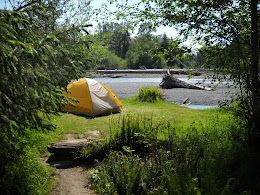 Camping next to the Hoh River in the Olympic National Park.