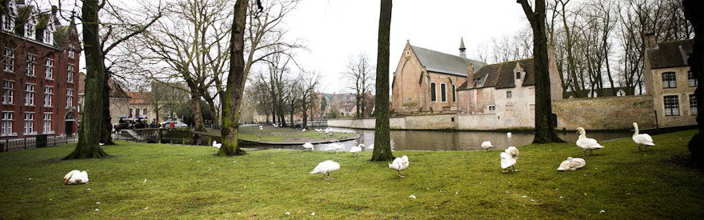 Belgium - Brugge - Vika-2882.jpg