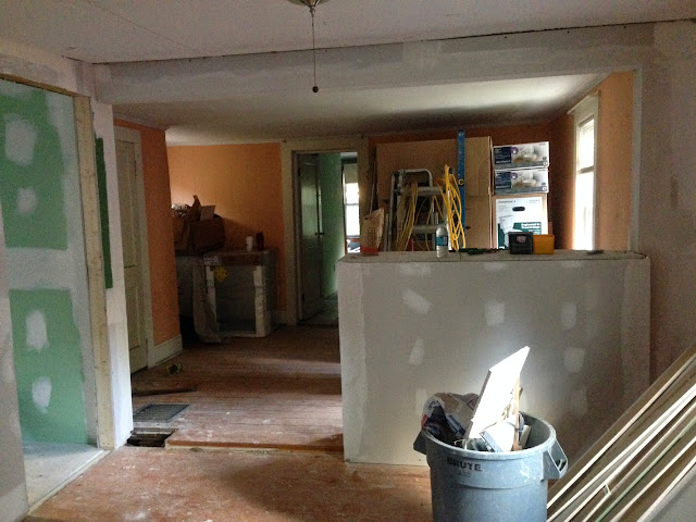 Renovation Project - IMG_0133.JPG