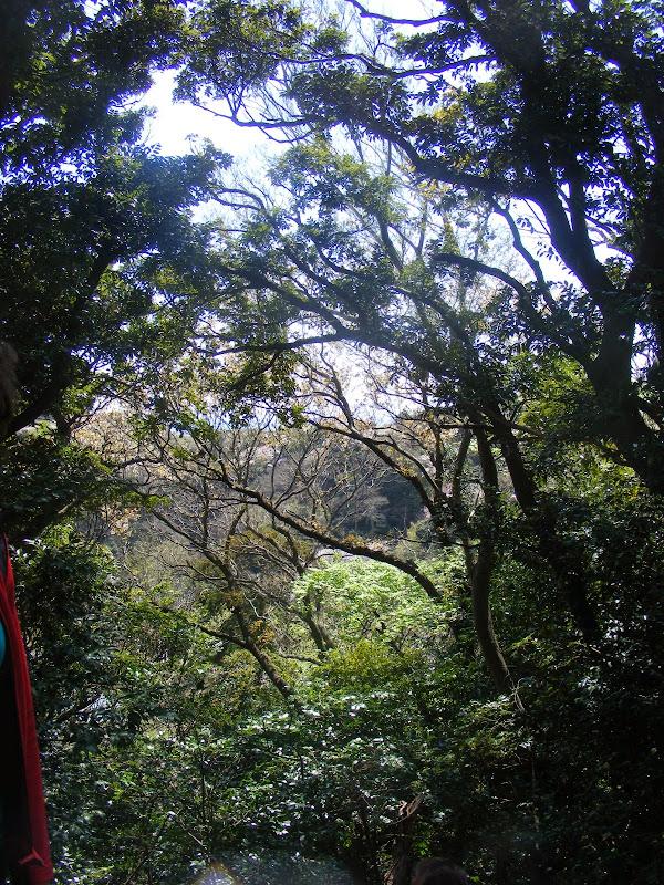 2014 Japan - Dag 7 - julia-DSCF1347.JPG