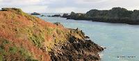 Pointe du Grouin : chenal de la Vieille Rivières et île des Landes