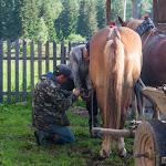 20170628_Carpathians_003.jpg