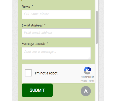 reCAPTCHA Feature Request - Tag Manager Help