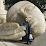 yassine ziad's profile photo