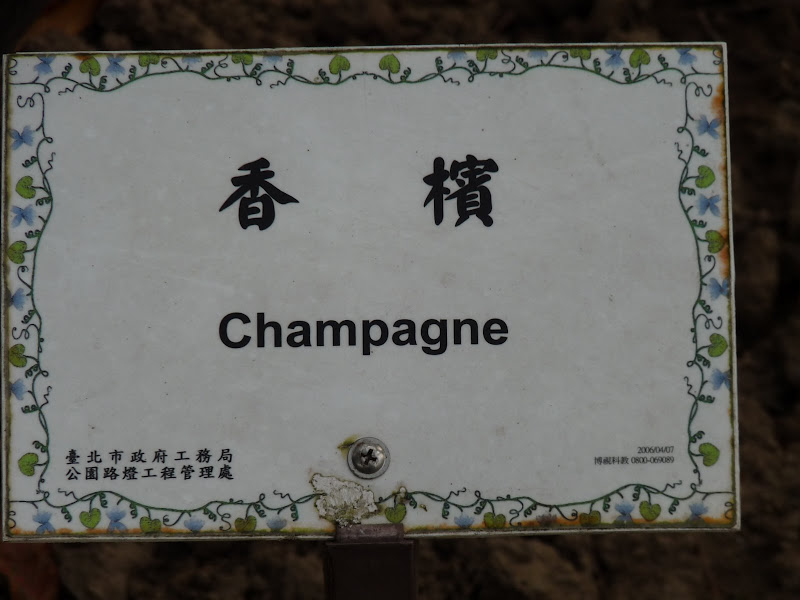 TAIWAN.Taipei. Dans le jardin de lune des nombreuses résidence présidentielle de CKS - P1050035.JPG