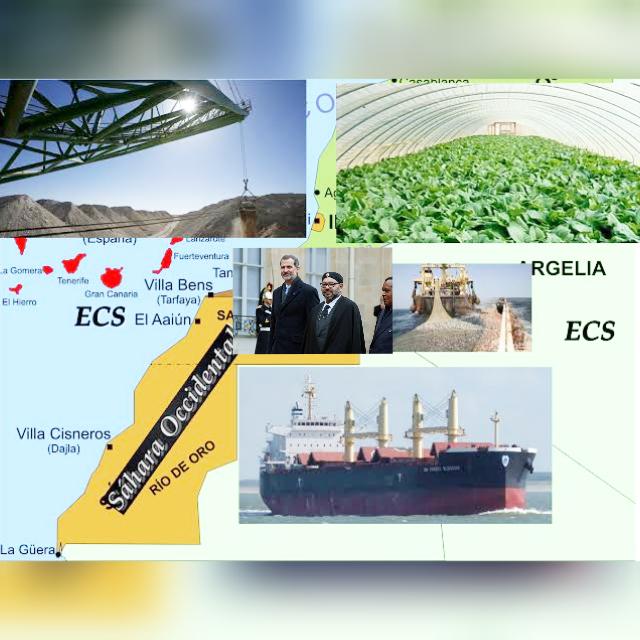 INVESTIGACIÓN | Lista de empresas que expolian el Sáhara Occidental.