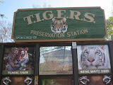 TIGERS Preservation Station - Myrtle Beach - 040510 - 22
