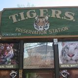 TIGERS Preservation Station - Myrtle Beach - 040510 - 22