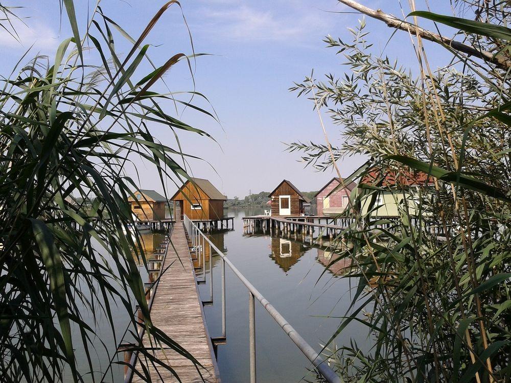 bokodi-lake-5