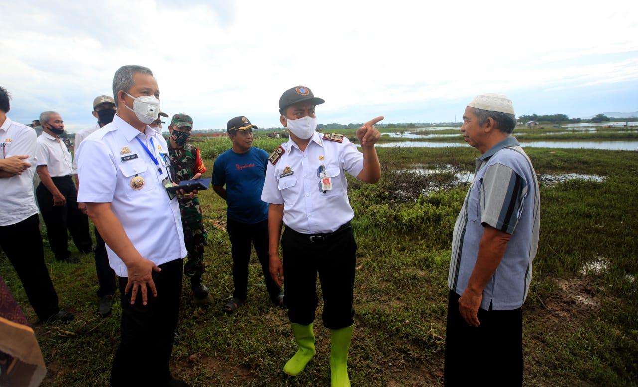 Tinjau Area Persawahan,  Yusran Optimis Produksi Pangan Makassar Bisa Meningkat