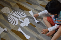 Learning The Human Skeleton for Preschoolers