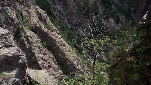 Du col 1150m, la vue vers le Fangu
