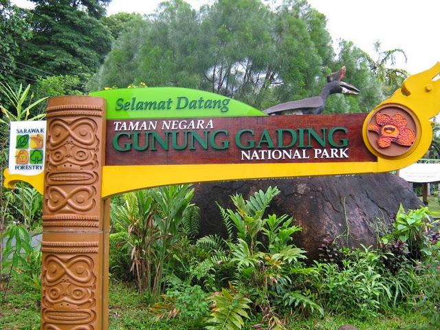 Taman-Negara-Gunung-Gading-National-Park