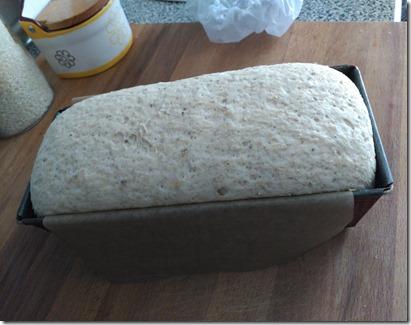 pan de espelta espe saavedra (4)
