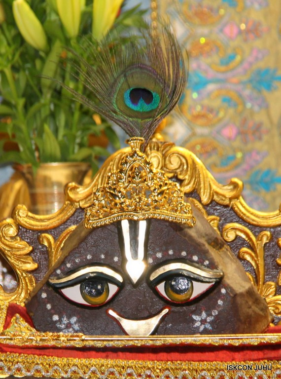 ISKCON Juhu Mangal Deity Darshan on 24 April 2016 (9)