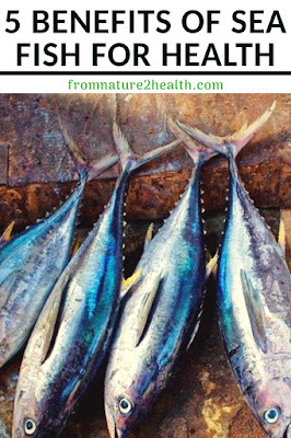 Sea Fish for Prevent Heart Disease, Sea Fish for Eye Health, Sea Fish for Maintain brain function and health, Sea Fish for Supports bone health